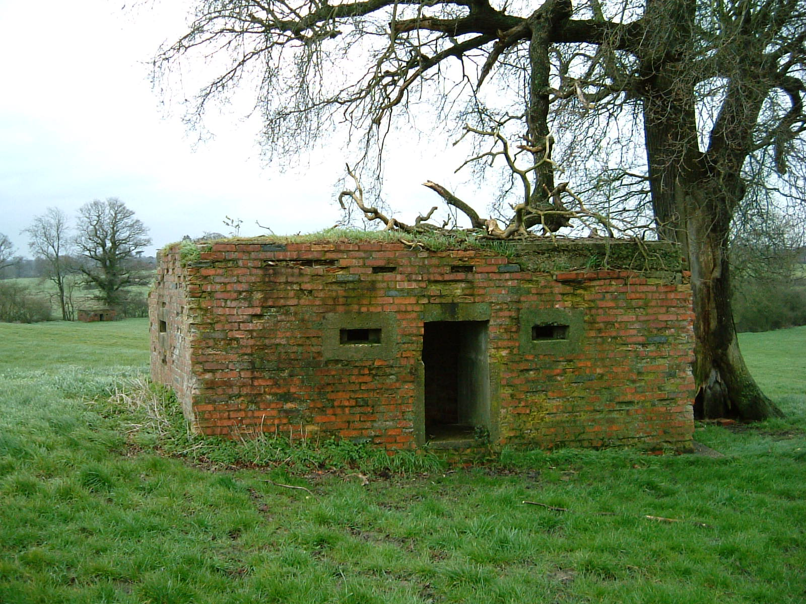 Back of pillbox showing its two cast embrasures