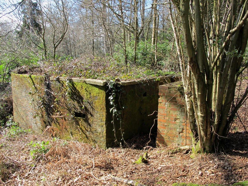 FW3/28 QF 6Pdr single chamber emplacement, Horsham, West Sussex