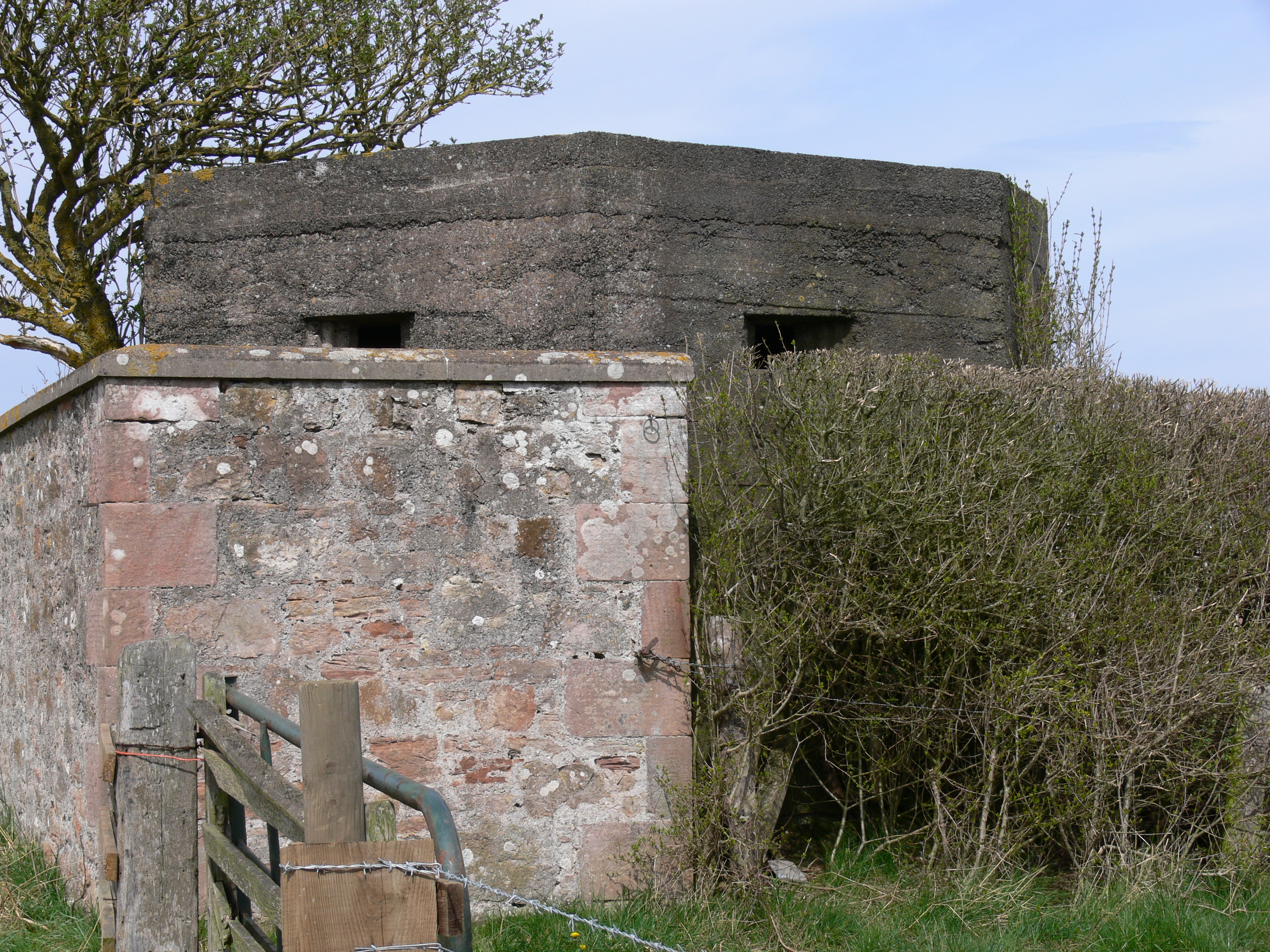 West Hall, Cheswick Tall Type 24