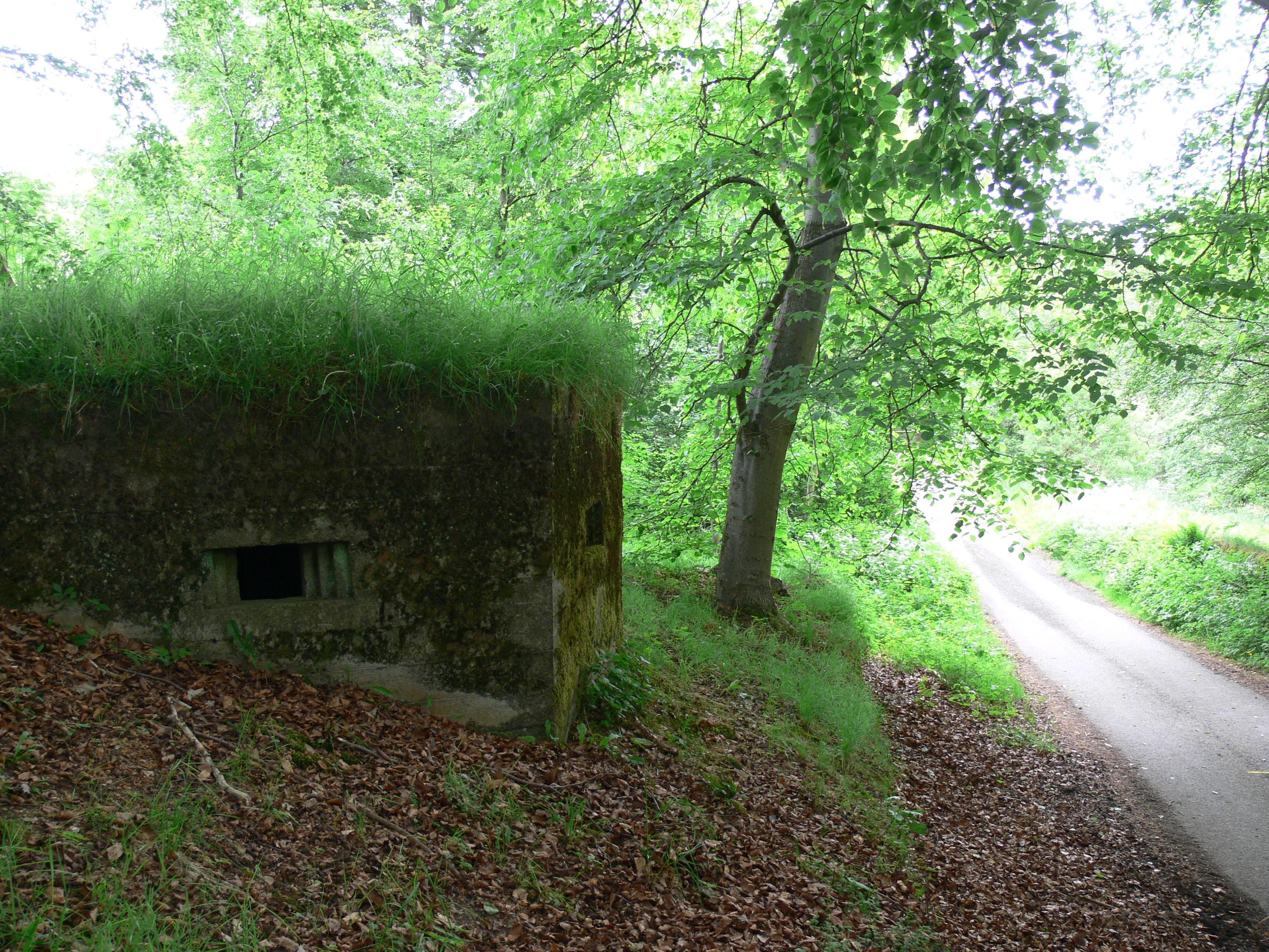 Eglingham, Northumberland, Type 24 Pillbox number 2.note unusual entry.