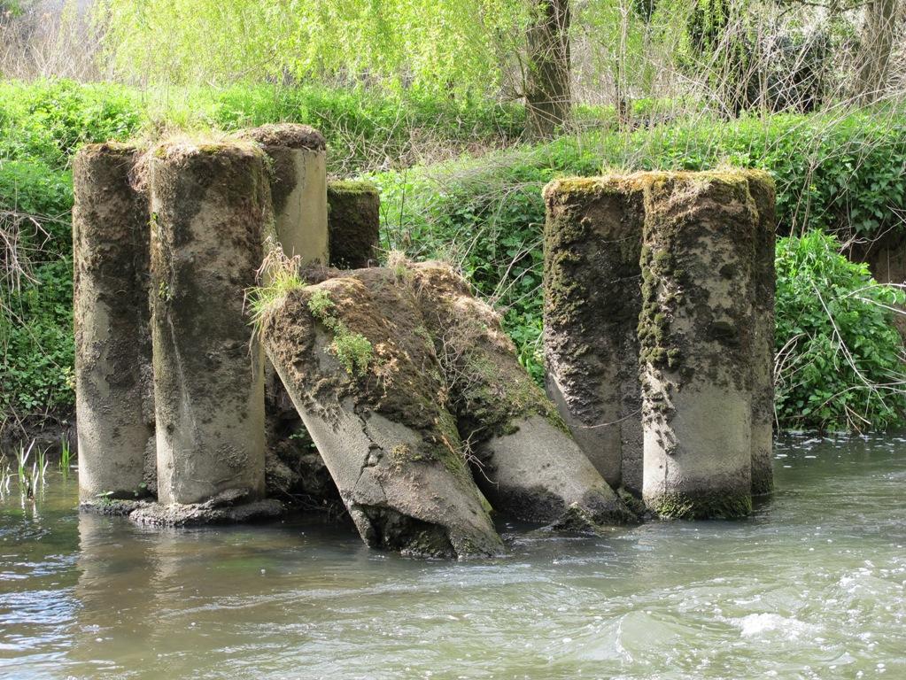 River Mole Obstacles