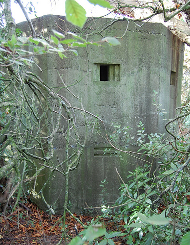 Withyham Two Storey Pillbox