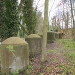 Basingstoke Canal Cylinders