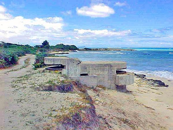 Hawaiian Pillbox