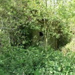 EAST STOKE TYPE 22 PILLBOX OVERGROWN!