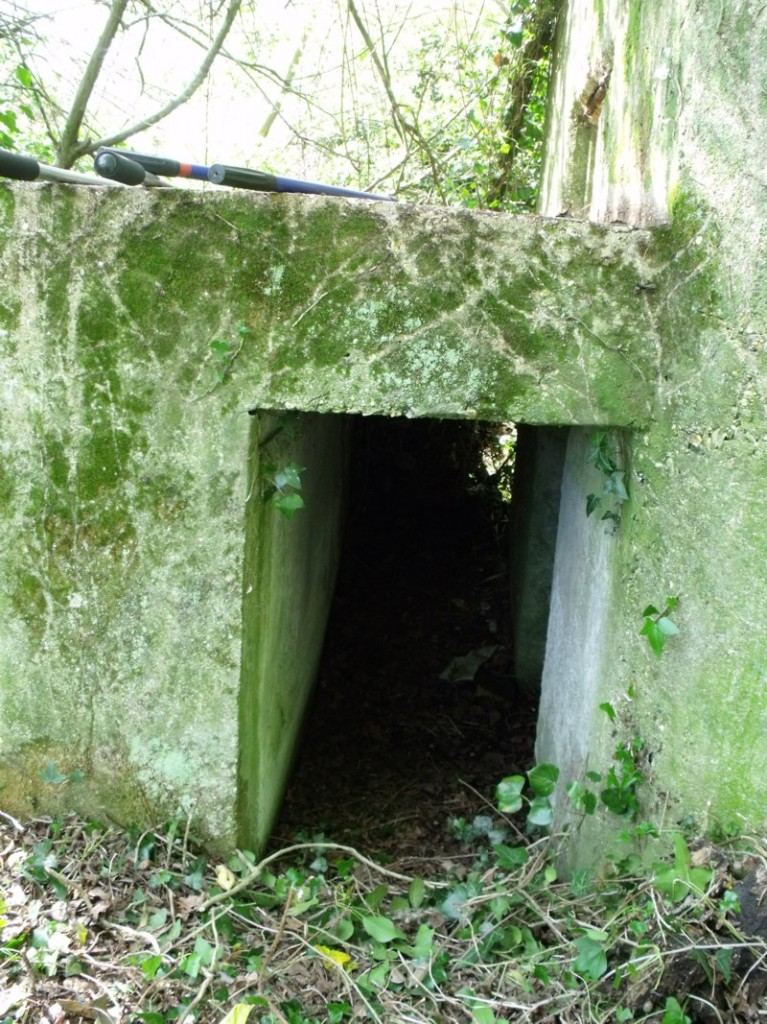 EAST STOKE TYPE 22 CLEARED PROTECTED ENTRANCE