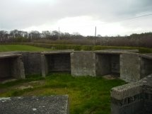 Kenilworth AA Battery
