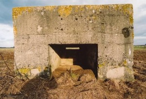 lillepillbox8