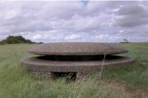 Mushroom Pillbox