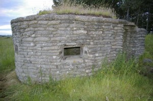 Beehive Pillbox, Scrogg Hill, Northumberland. Photo S. Lewins