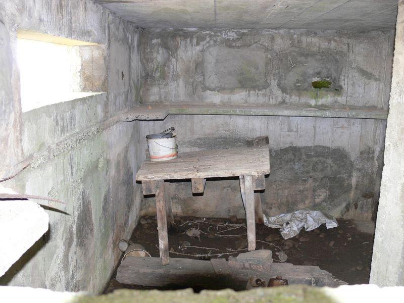Beal Farm Square Pillbox view through end loophole