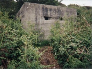 pillboxsquaredenes1