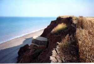 Coastal Erosion In Action