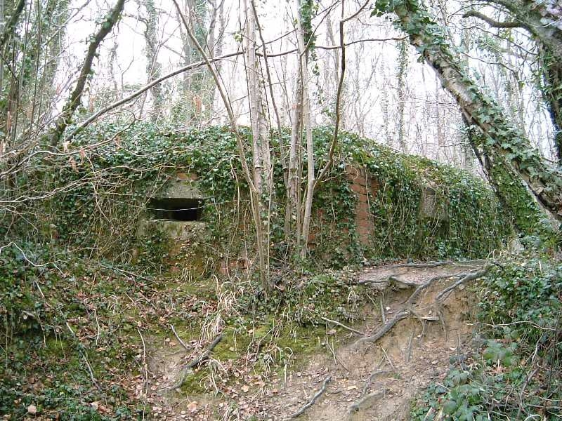 The pillbox is on private land, this is a front view looking from canal towpath.