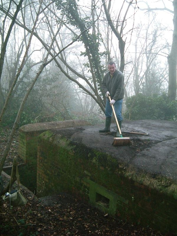 Tim sweeping roof off