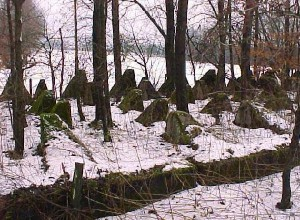 This picture shows the adjacent section under snow.  The skewed shapes of the pimples, which further enhances the obstacle, can be seen on the left.