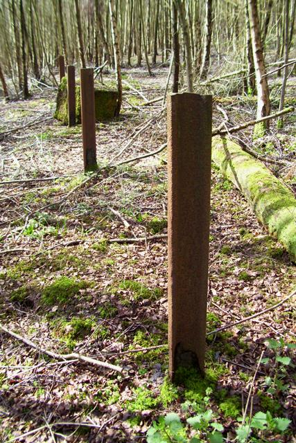 Anti-Tank Vertical Rails, East Sussex. Picture by Tim Denton 2009
