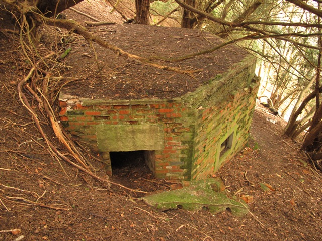 With its rear well dug into the sloping hillside the shellproof pillbox has its entrance on the side.