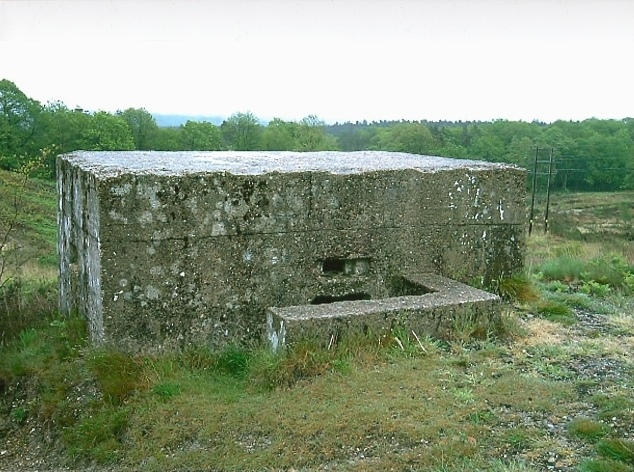 Bagshot Heath Rectangular Infantry Pillbox