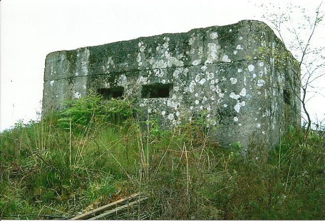 Bagshot Heath Rectangular Infantry Pillboxes