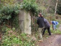 Sara, Ian and Ken making a start on removing the ivy and brambles.