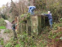 The vegetation covering gradually being removed using cutters, saw and force.